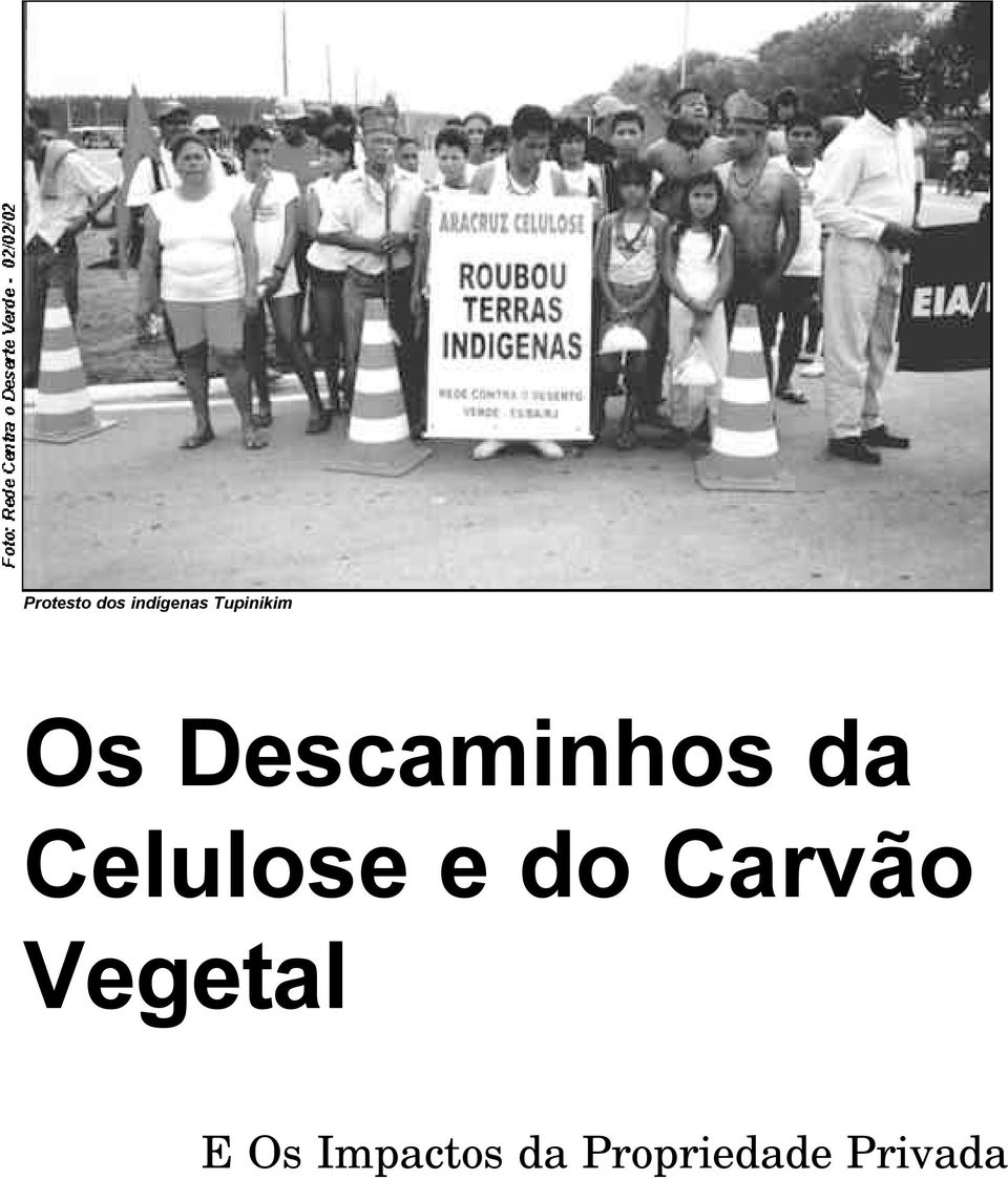 Celulose e do Carvão Vegetal
