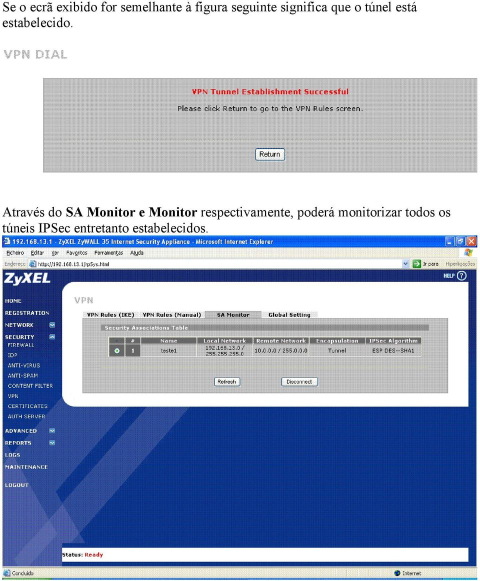 Através do SA Monitor e Monitor respectivamente,