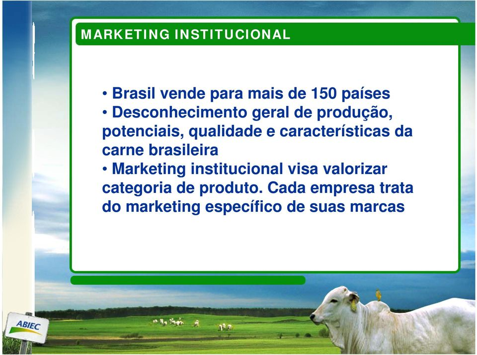características da carne brasileira Marketing institucional visa