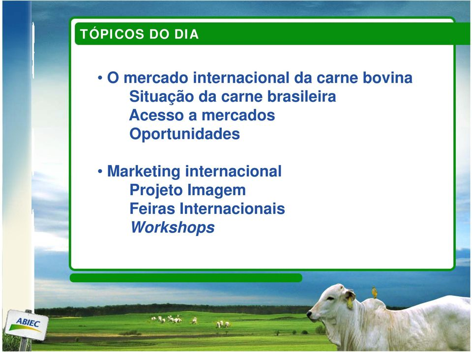 mercados Oportunidades Marketing internacional