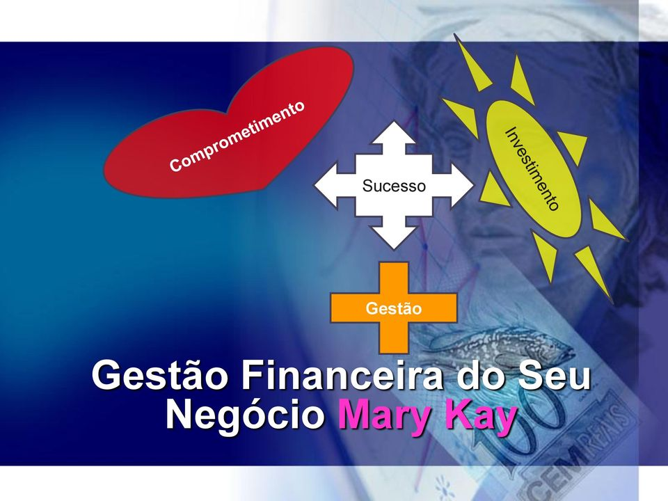 Financeira do