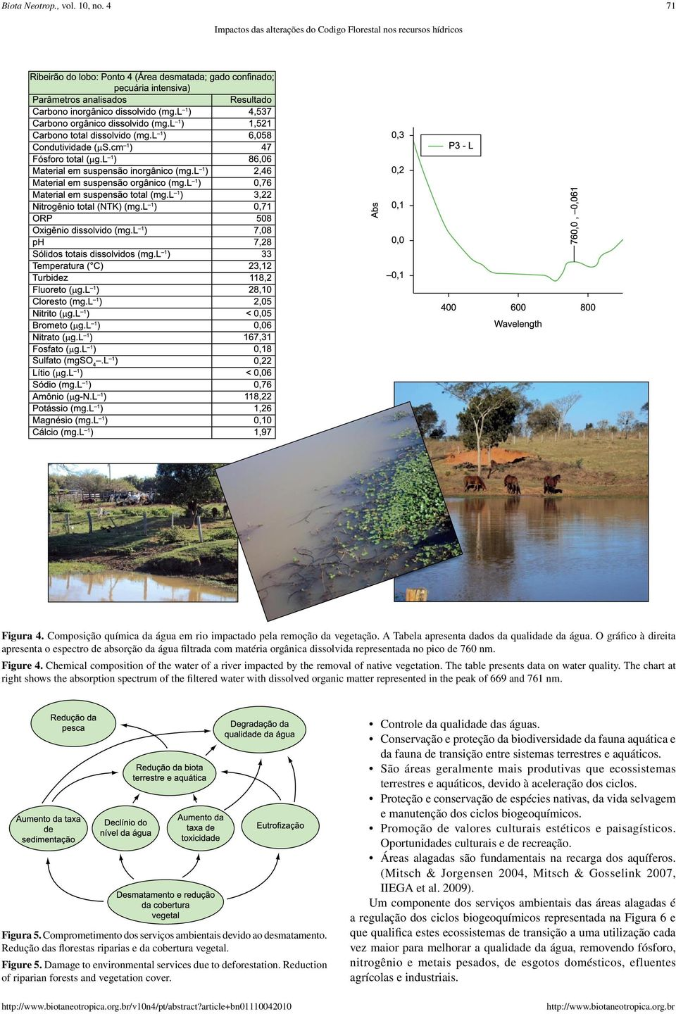 Chemical composition of the water of a river impacted by the removal of native vegetation. The table presents data on water quality.
