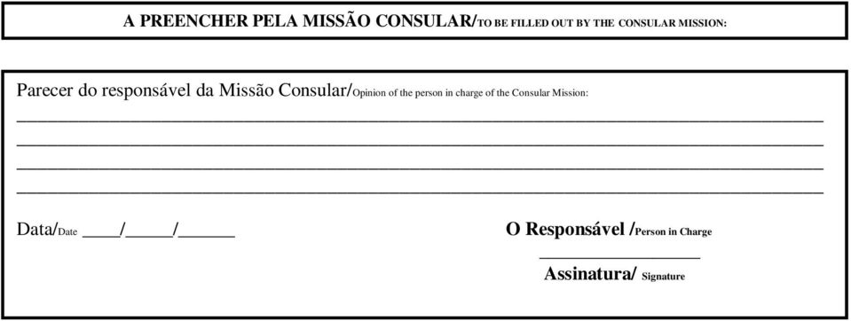 Consular/Opinion of the person in charge of the Consular