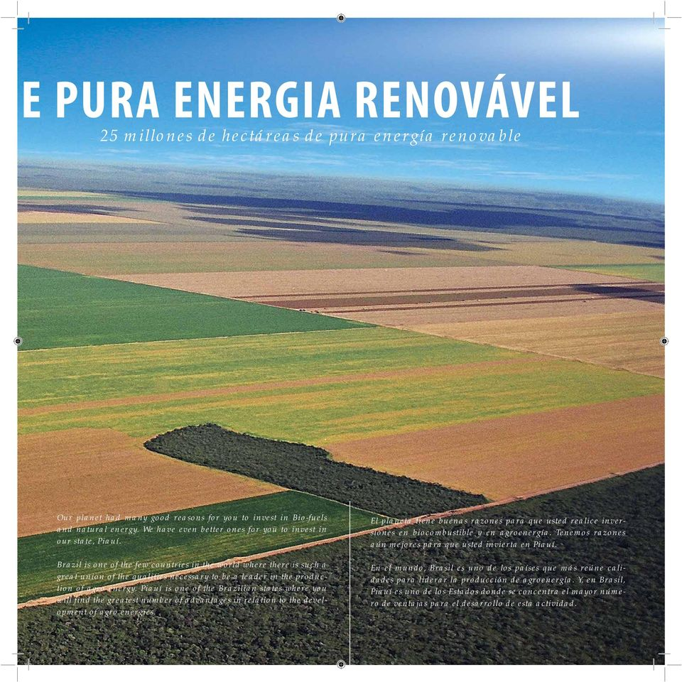 Piauí is one of the Brazilian states where you will find the greatest number of advantages in relation to the development of agro energies.