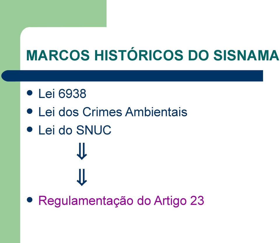 Crimes Ambientais Lei do