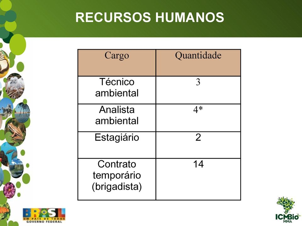Analista ambiental 3 4*