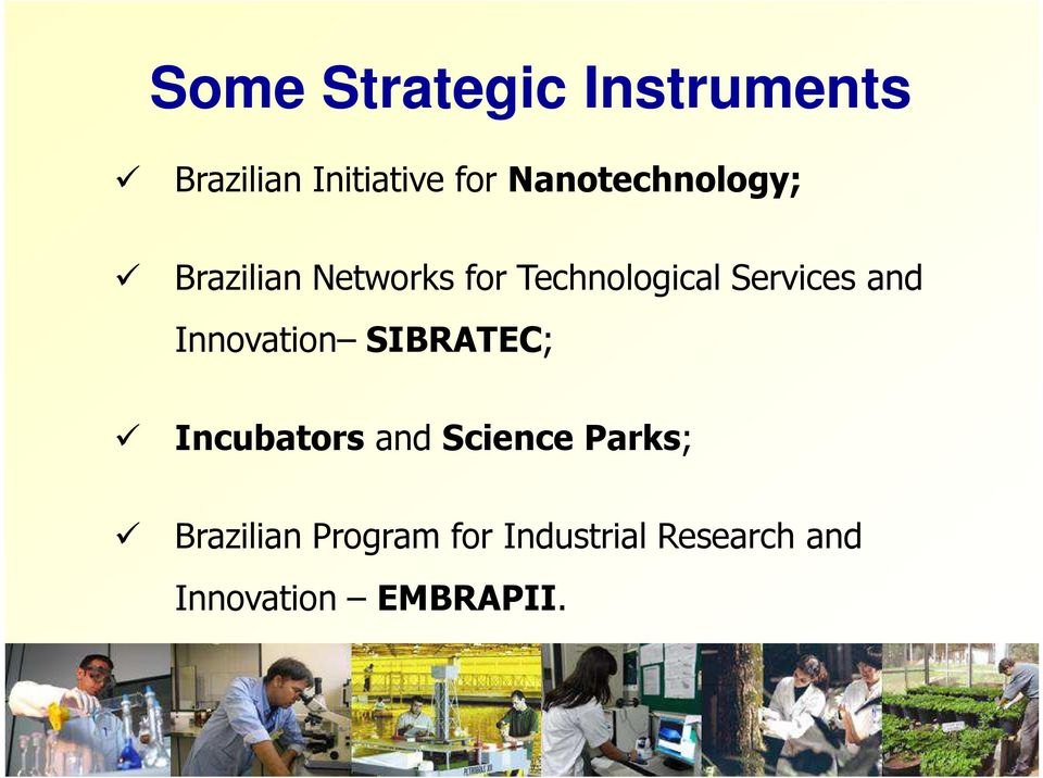 Services and Innovation SIBRATEC; Incubators and Science