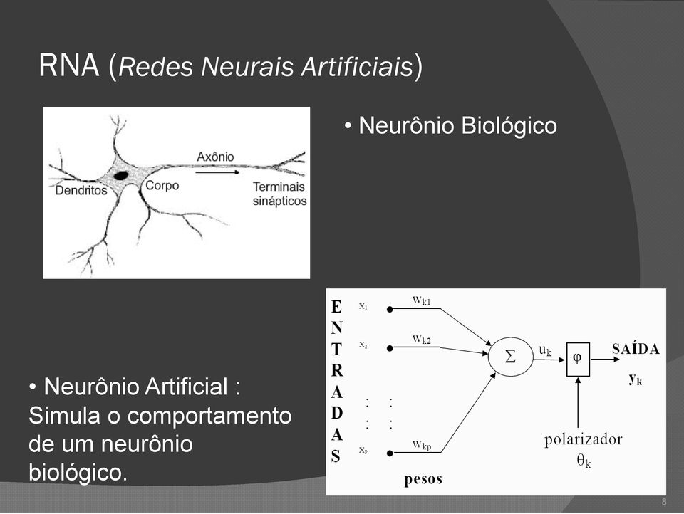 Biológico Neurônio Artificial