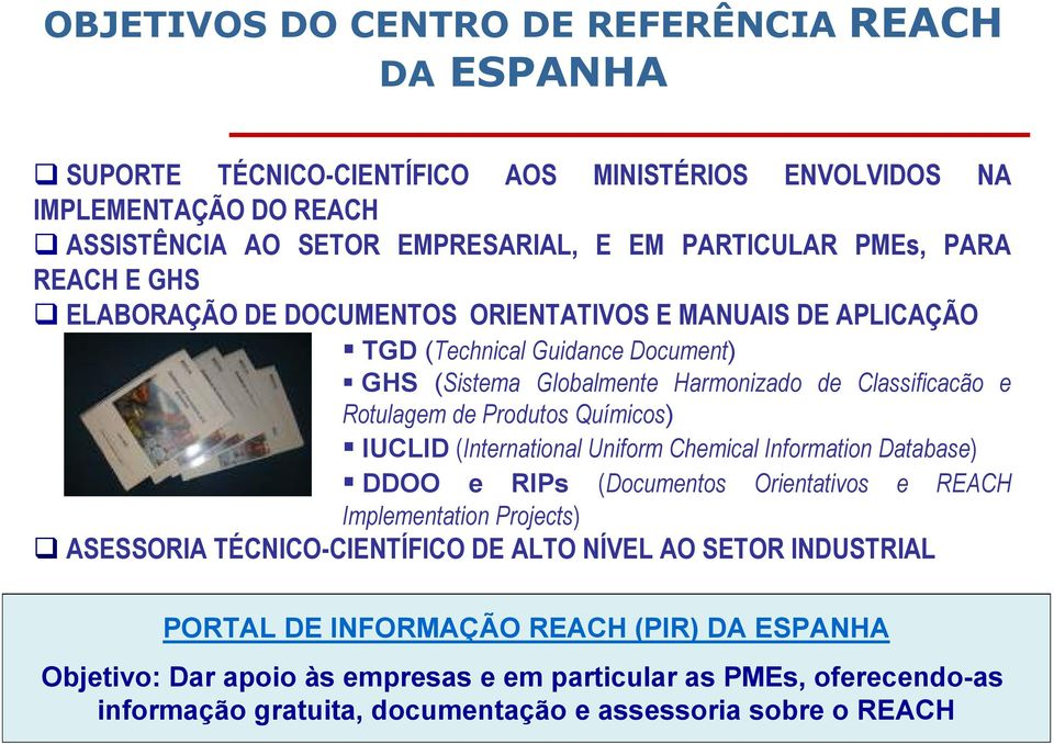 Produtos Químicos) IUCLID (International Uniform Chemical Information Database) DDOO e RIPs (Documentos Orientativos e REACH Implementation Projects) ASESSORIA TÉCNICO-CIENTÍFICO DE ALTO