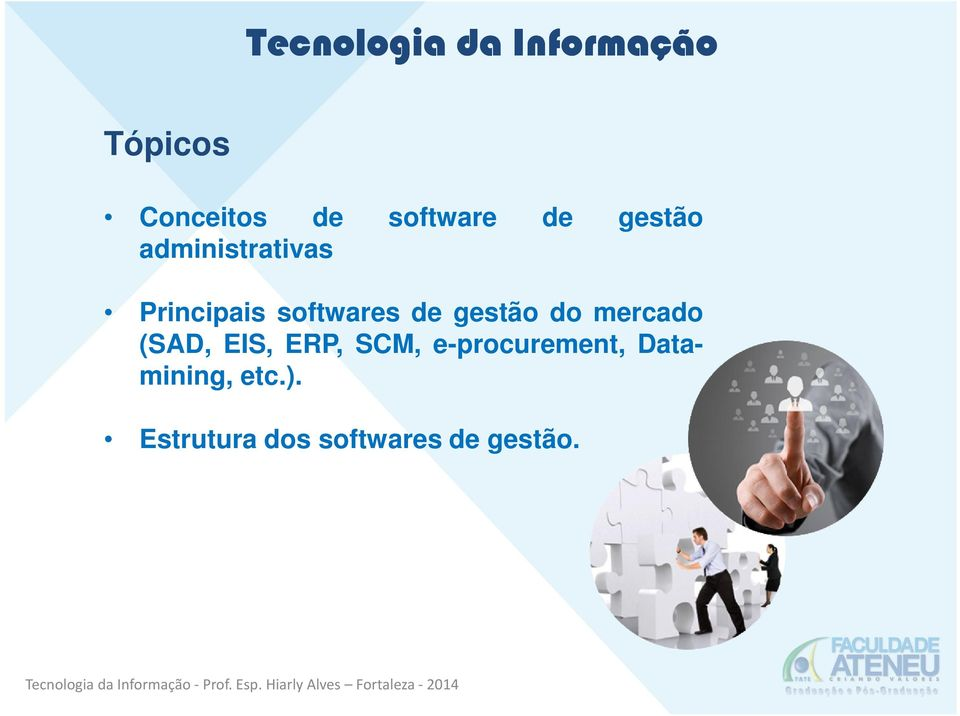 do mercado (SAD, EIS, ERP, SCM, e-procurement,