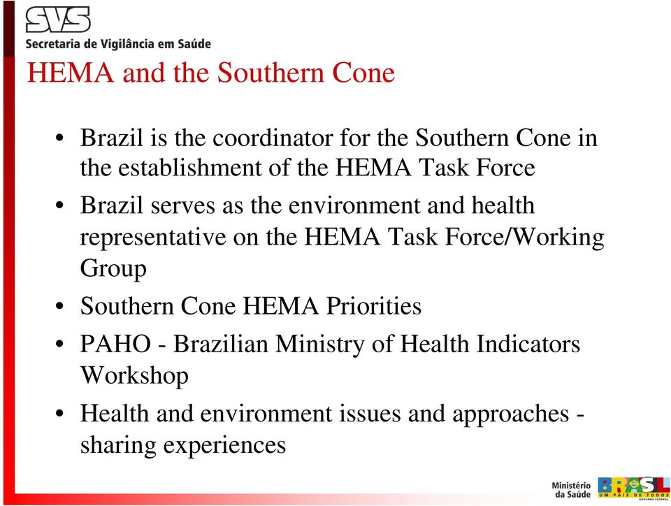 representative on the HEMA Task Force/Working Group Southern Cone HEMA Priorities PAHO -