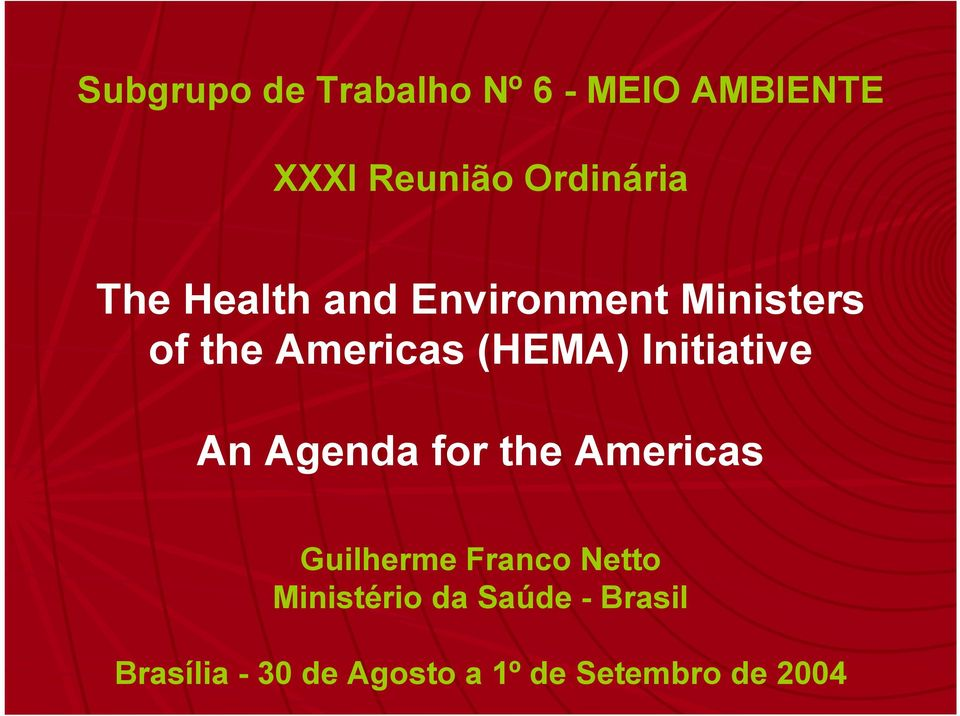 Initiative An Agenda for the Americas Guilherme Franco Netto