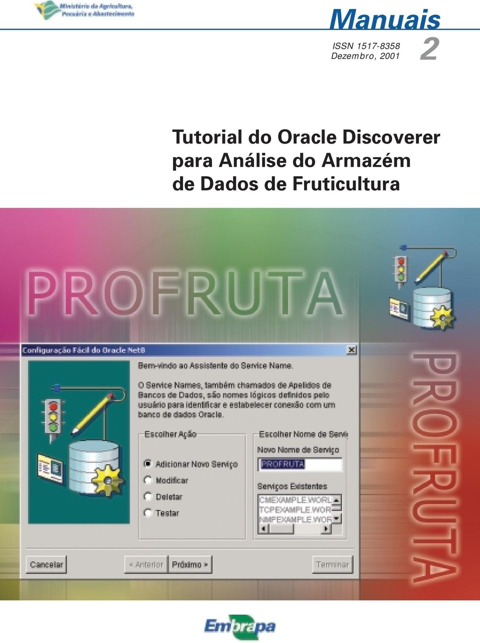 Oracle Discoverer para