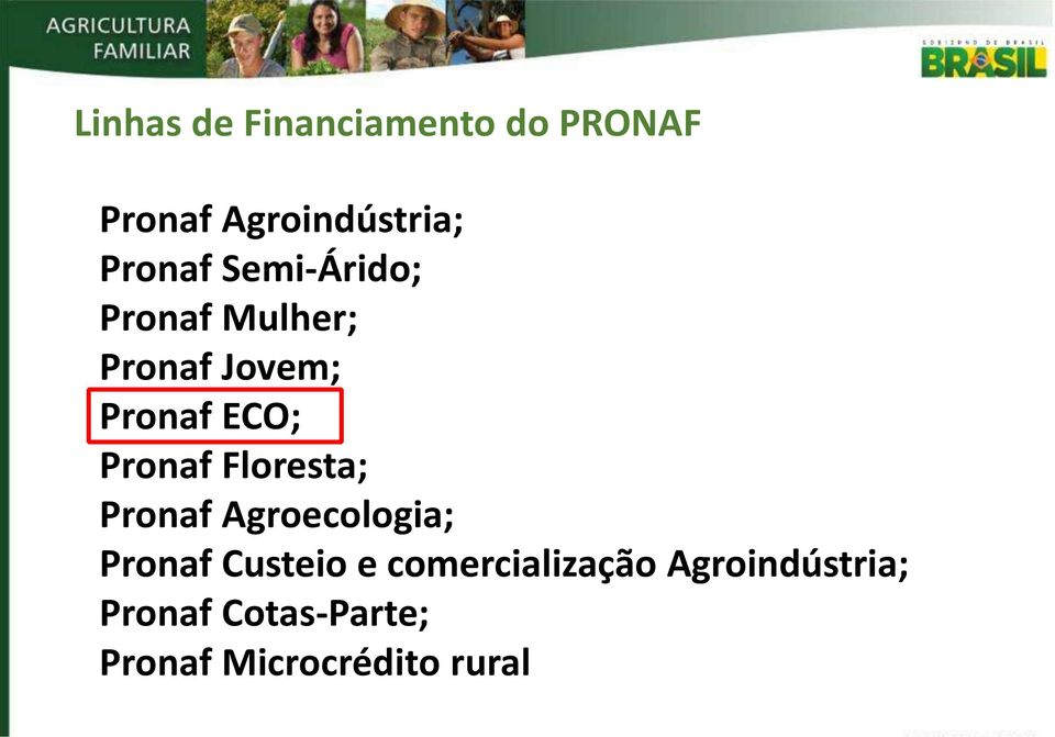 Pronaf Floresta; Pronaf Agroecologia; Pronaf Custeio e