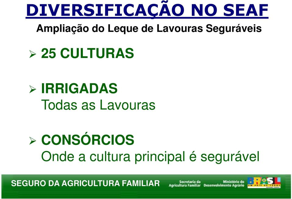 CULTURAS IRRIGADAS Todas as Lavouras