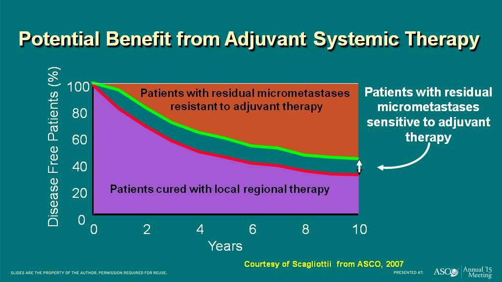 Potential Benefit from Adjuvant Systemic Therapy