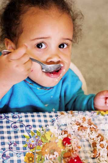 90 Hábitos Alimentares Saudáveis no Norte e Nordeste Project (Health Eating Habits in North and Northeast Project) Promote healthy eating habits for children ranging from 0 to 5 years of age with the