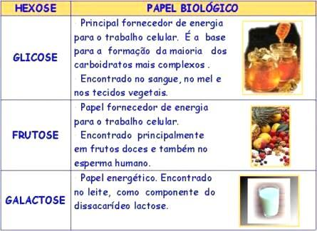Composicao Quimica Da Celula Pdf Download Gratis